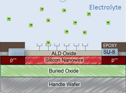 Silicon nanowire field-effect transistors