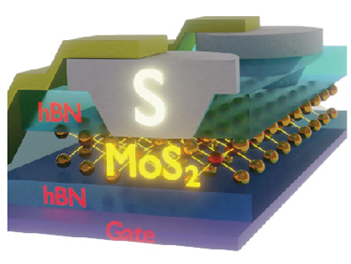 Superconducting Contacts to MoS2